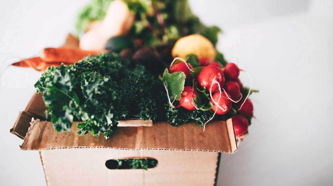Winter Vegetables in Cardboard Box