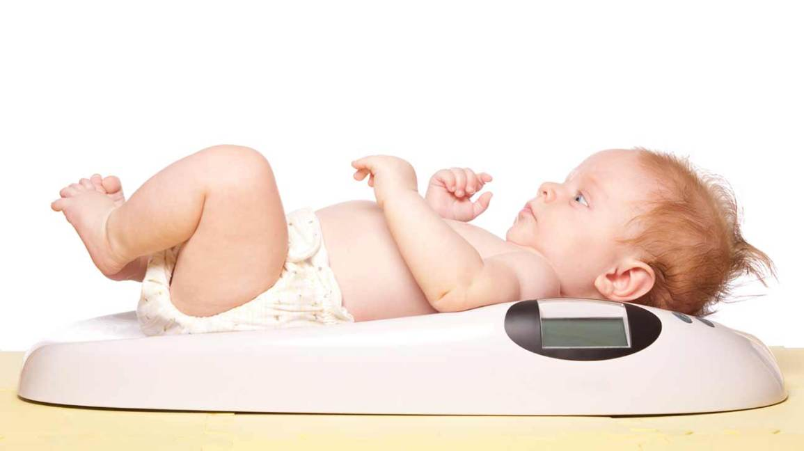 infant obesity predictor