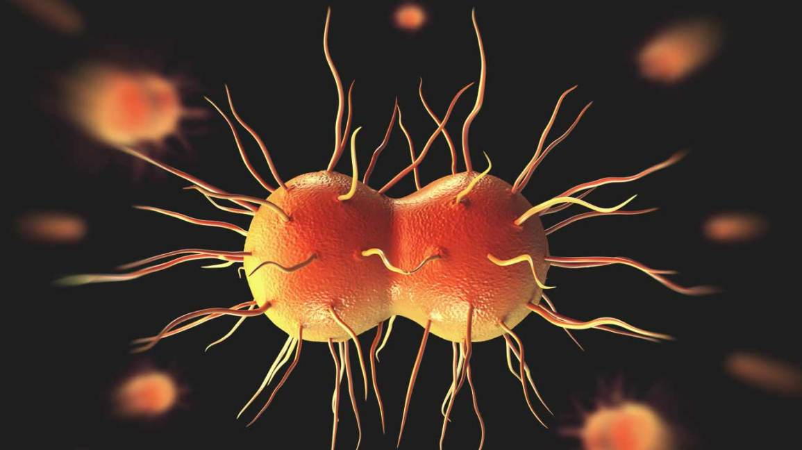super gonorrhea concerns