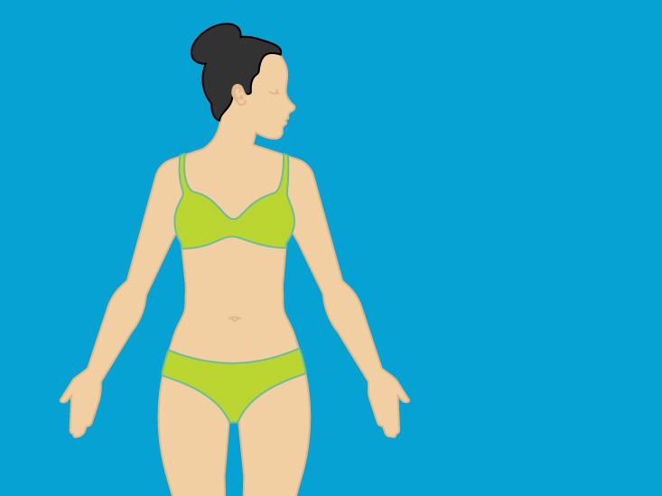 female chest muscles anatomy, diagram \u0026 function body mapsWoman Of Upper Torso Diagram #16
