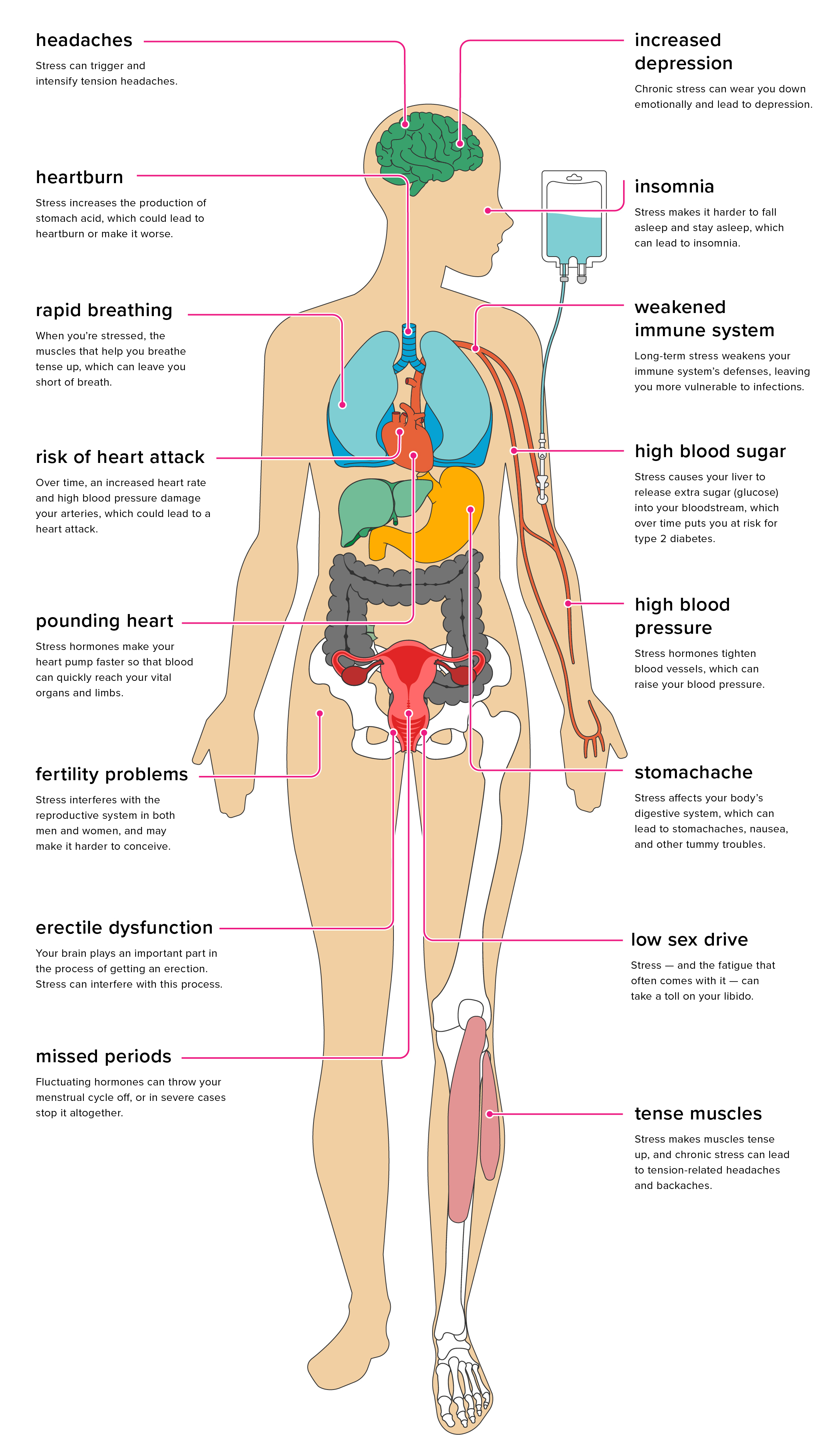 picture 10 Ways Your Weight Can Affect Your Sex Life