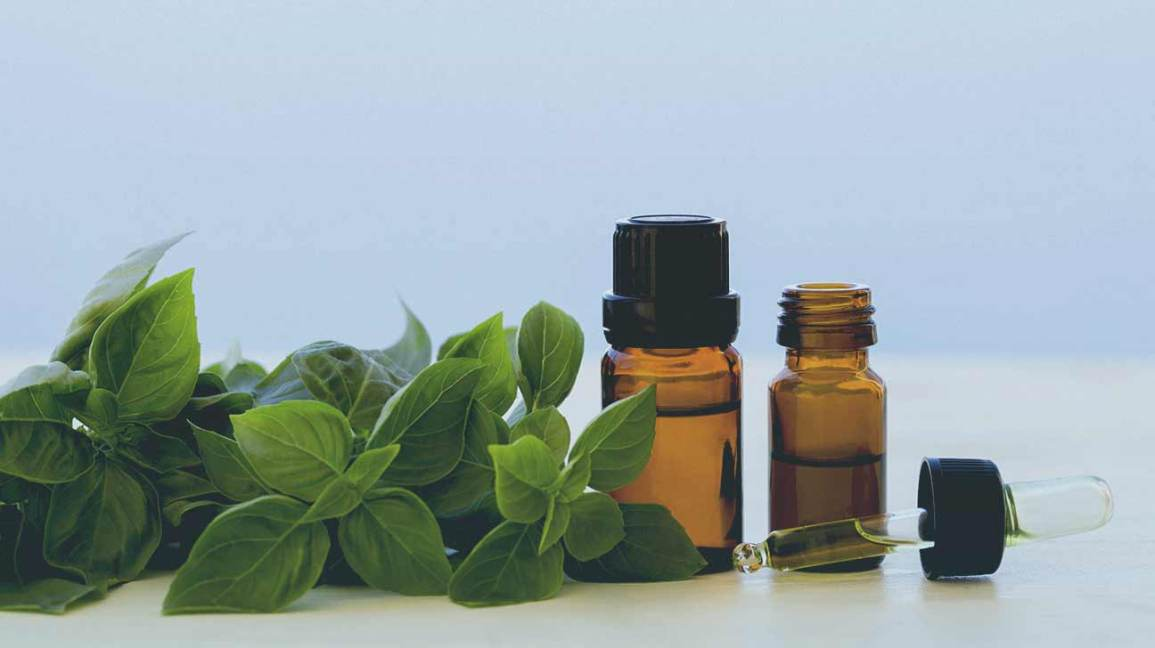 essential oils for ear infection
