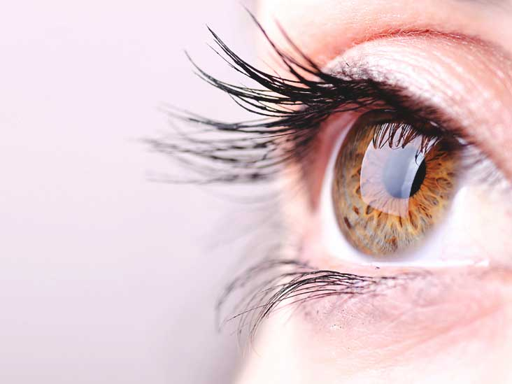 Coconut Oil For Eyelashes Benefits And Precautions