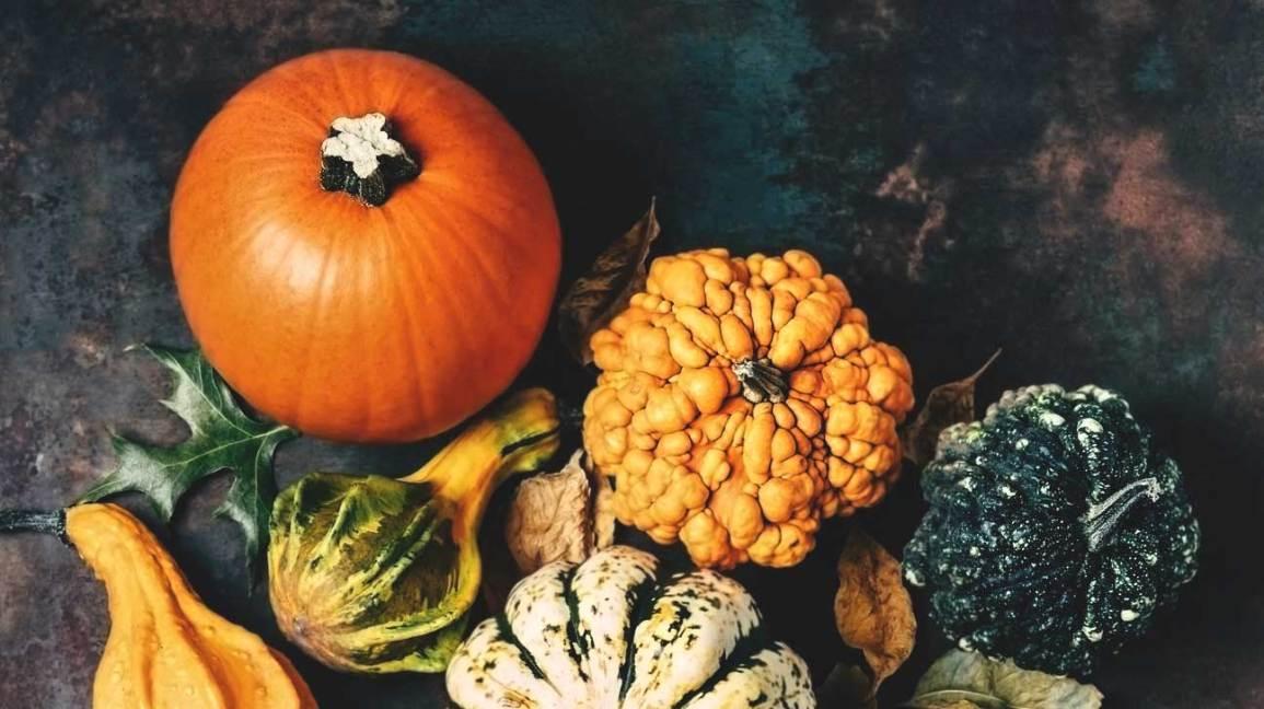 seasonal recipes