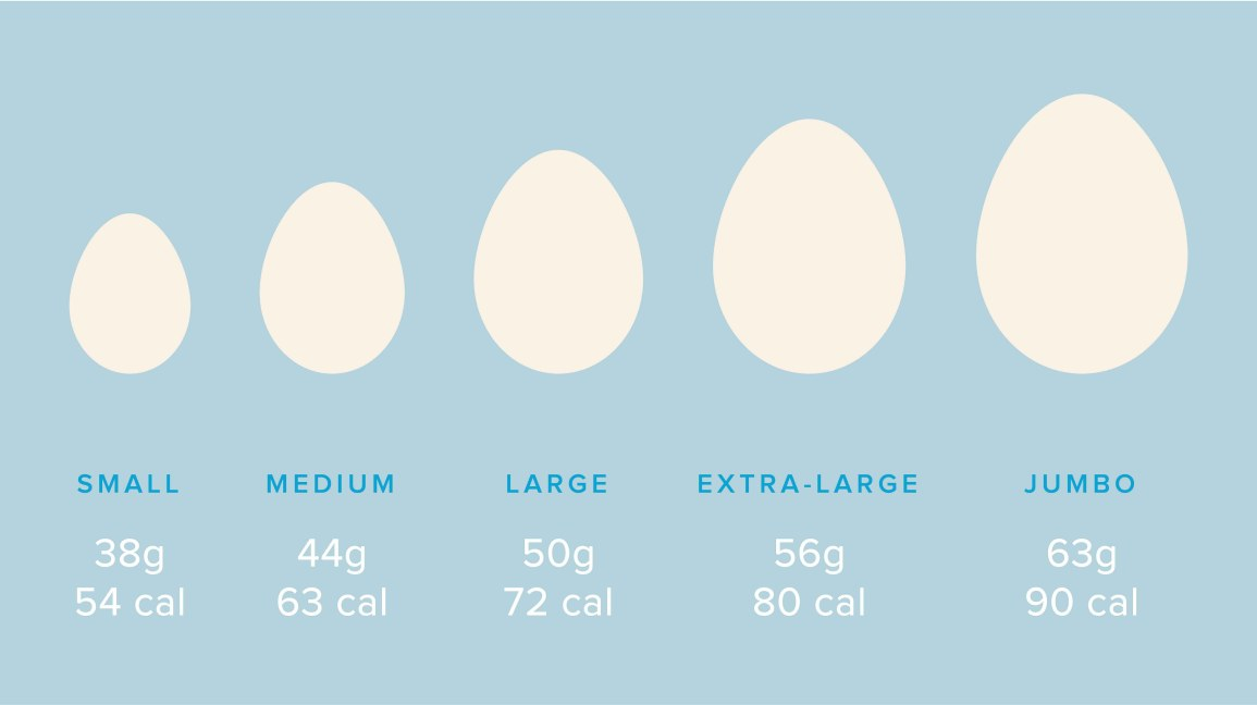 Calories In An Egg Whites Vs Yolks Protein Cholesterol And More