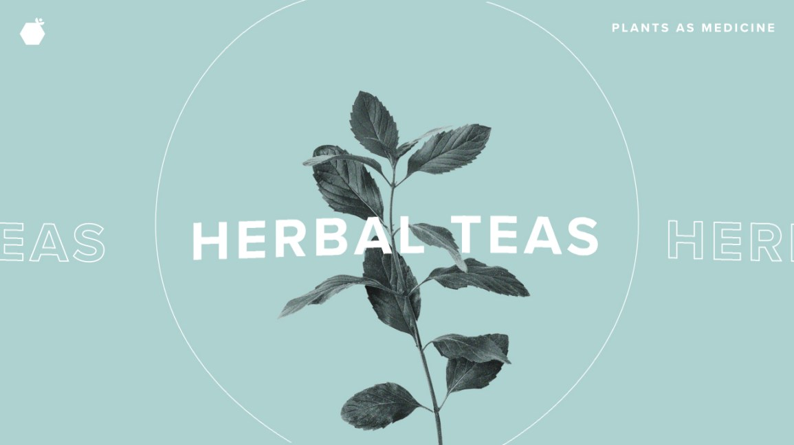 How to Grow, Harvest, and Dry Your Own Fresh Herbal Teas