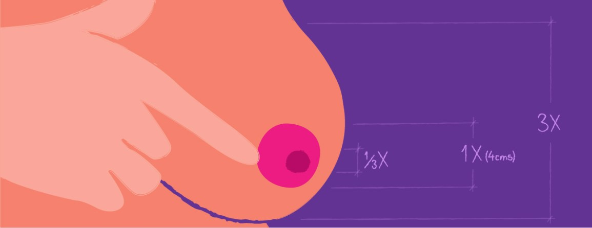 large areola average size breastfeeding and menstruation effects