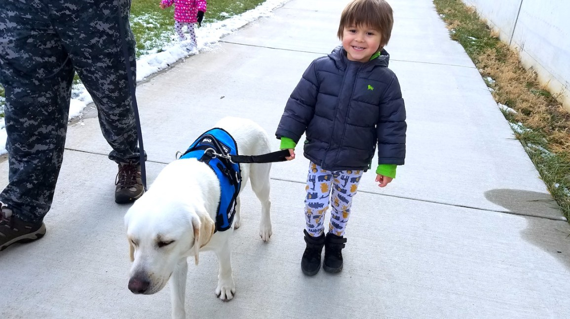 How A Service Dog Changed My Autistic Son S Life