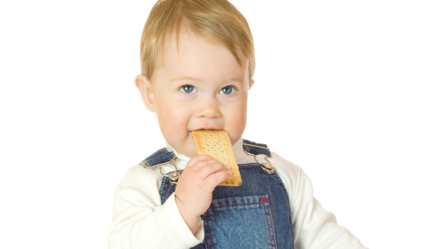 Why Arrowroot is Good for Teething