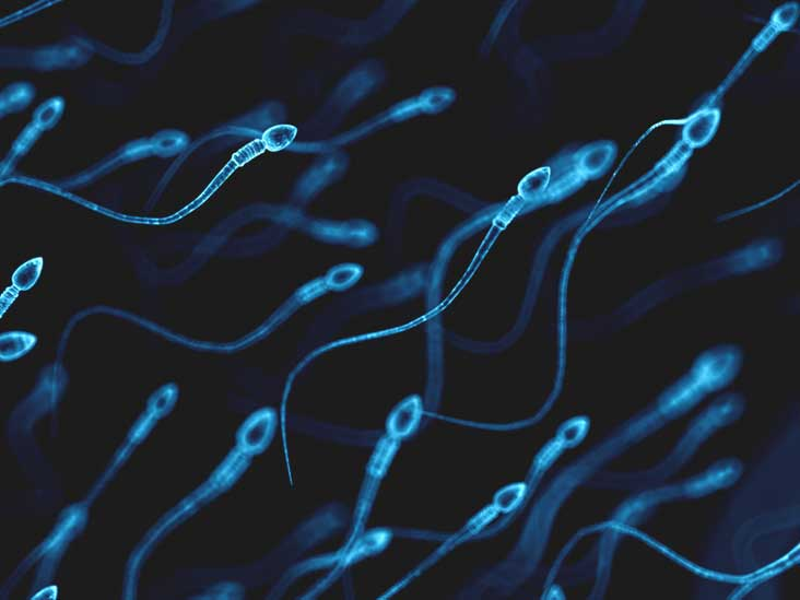 When should you be able to sperm