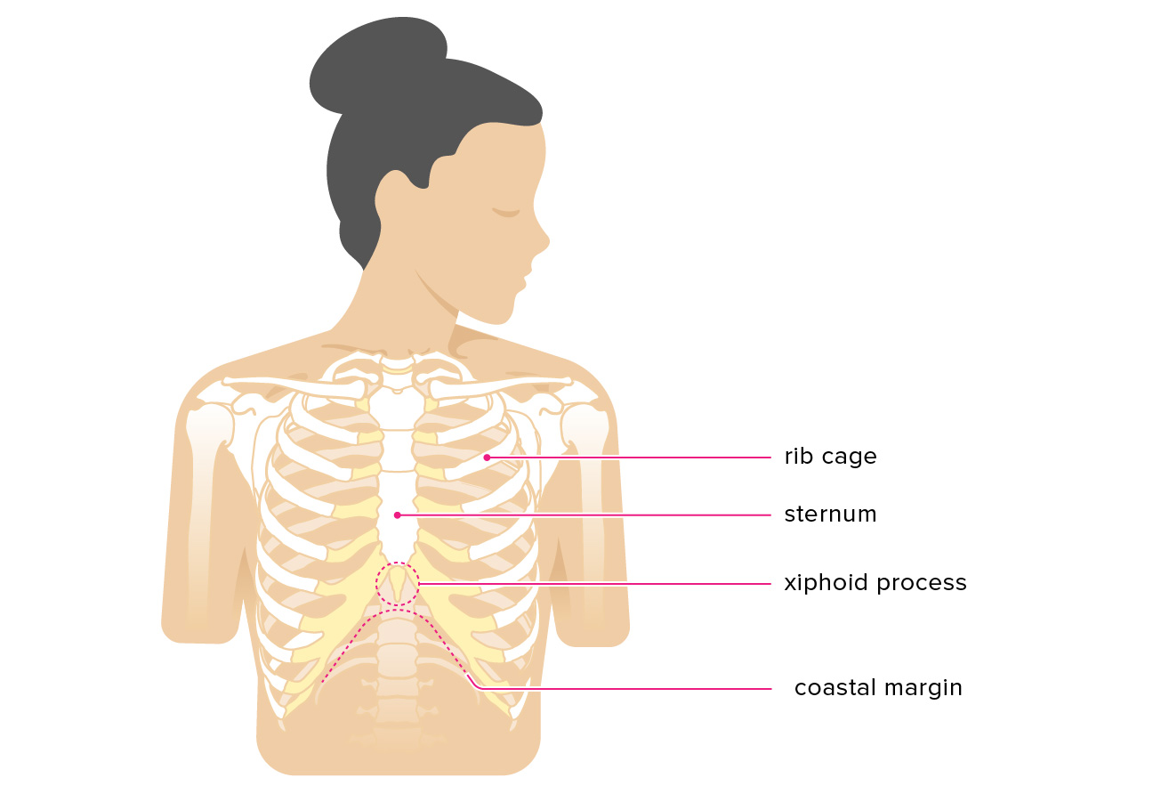 Xiphoid Process Pain: Causes, Symptoms, Treatments