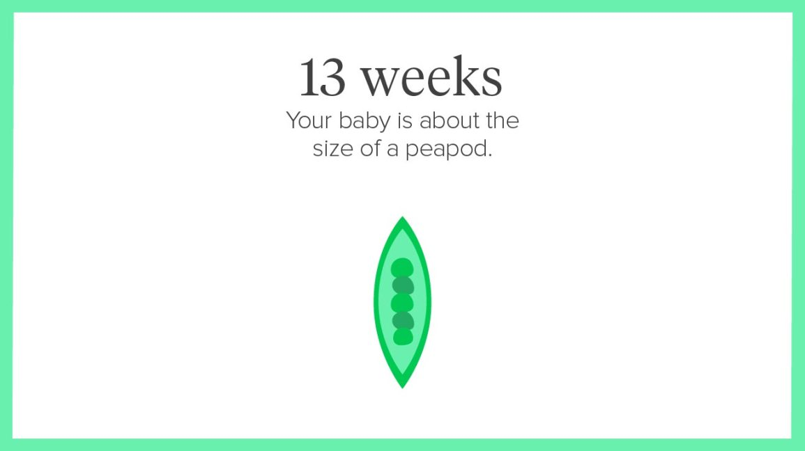 13 weeks Share on Pinterest