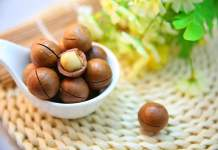 Macadamia Nut benefits