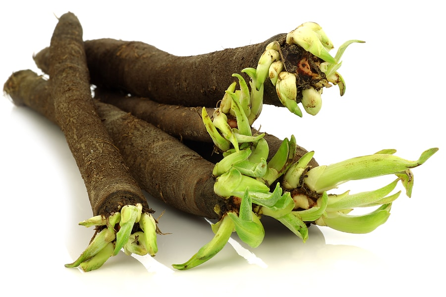 Health Benefits of Black Salsify
