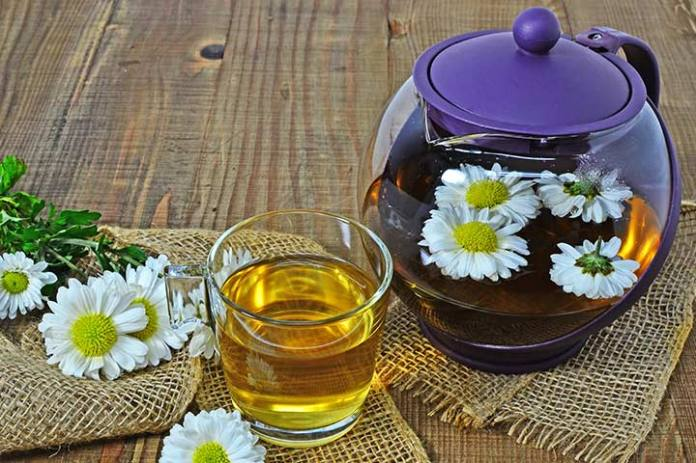 benefits of chrysanthemum tea