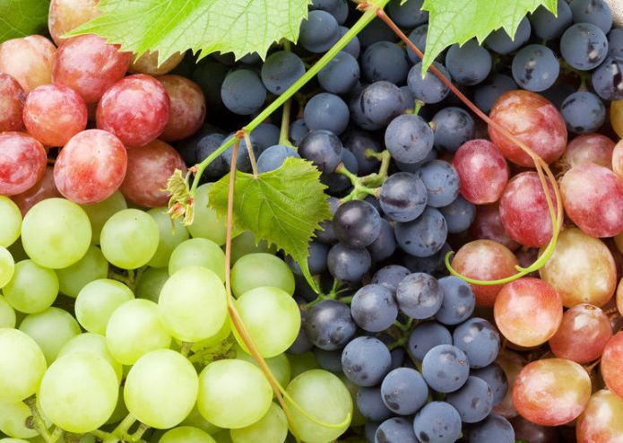 benefits of grapes, grapes nutrition