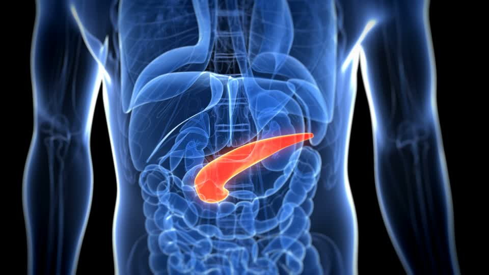 home remedies for pancreatitis