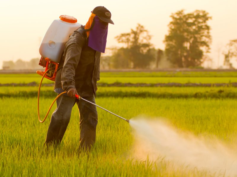 The herbicide living in your body