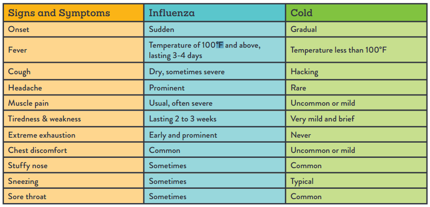 Cold versus flu: 5 ways to spot the difference | HealthPartners Blog