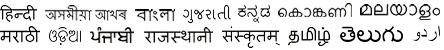 15 Indian Languages: Hindi, Assamese, Bengali, Gujarati, Kannada, Konkani, Malayalam, Marathi, Oriya, Punjabi, Rajasthani, Sanskrit, Tamil, Telugu and Urdu.