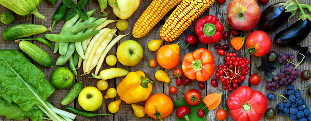 Health Benefits of vegetables to Human Health And Even More.