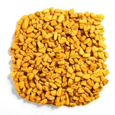 The Fenugreek seeds for hair loss