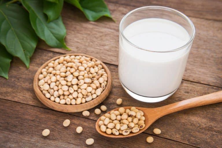 Semi di soia e bicchiere di latte di soia