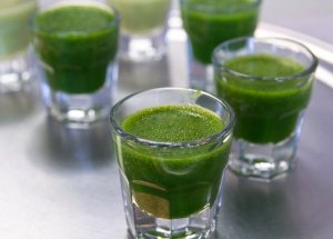 Wheatgrass Shot – Fountain of Eternal Youth