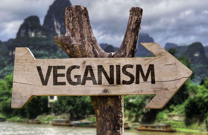 Being Vegan – Hot or Not?