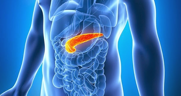 Spot Early Signs Of Pancreatic Cancer By Trying This App