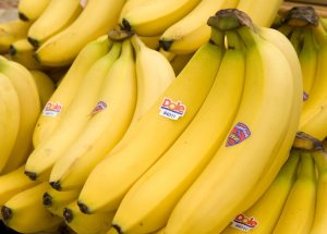 Bananageddon: Bananas could disappear from the market