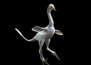 New Discovery of a Fossil Looking More like a Duck-Dinosaur