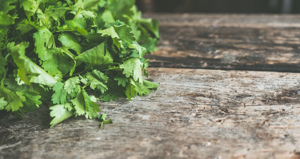 The link between your DNA and Cilantro