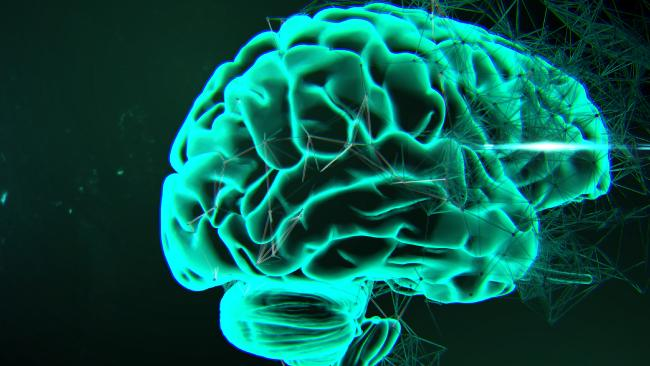 A New Study Reveals That Autism, Schizophrenia And Bipolar Disorder Have Something In Common