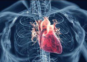 Longevity In Coronary Disease Patients Increased By Exercising, Study Says