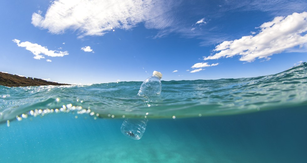 Plastic Waste In The Oceans Affects The Marine Bacteria Growth, With Consequences On The Whole Marine Ecosystem