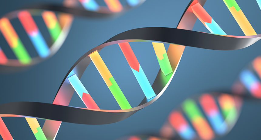 Genetic Diversity Is Minimal, At Only 0.1%, In Humans And 90% Of Animal Species, As Well