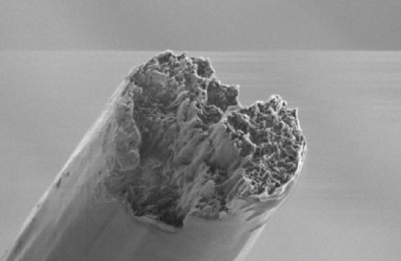 The World's Most Resistant Biomaterial Has Been Produced Using Cellulose Nanofibers
