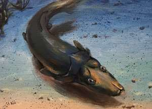 Ancient Fish Reconstructed By Australian Scientists Starting From 400-Million-Year-Old Fossils