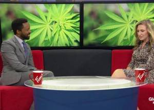 Not all Canadian Pediatricians know they can Prescribe Cannabis for Kids