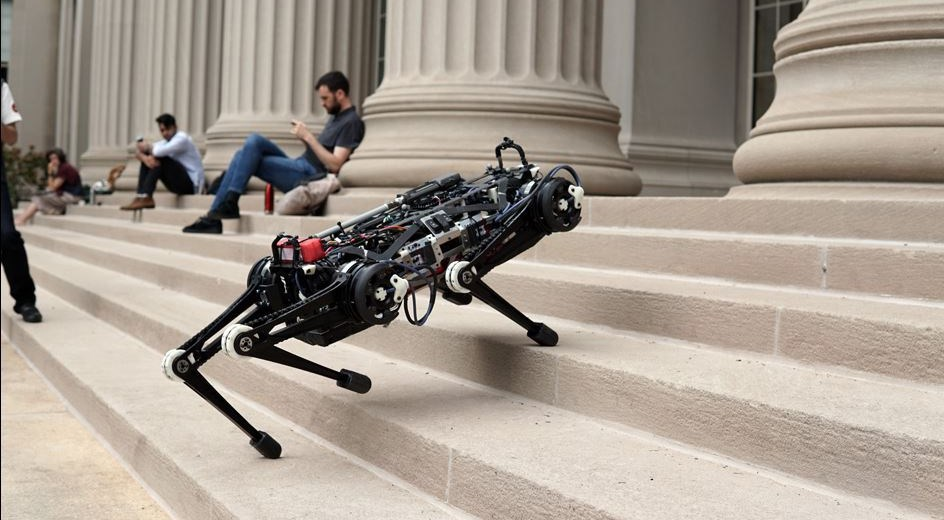 The Blind Cheetah Robot Which Can Save Lives