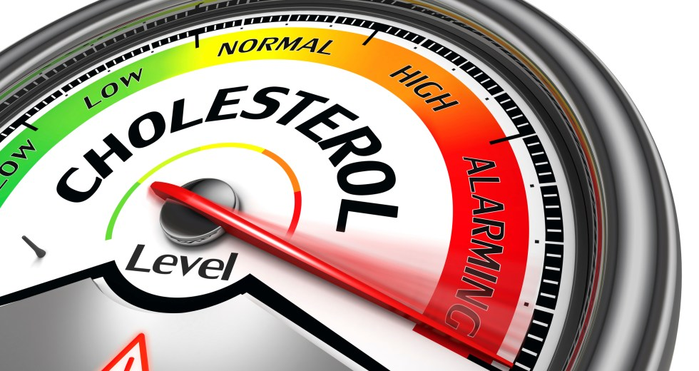 'Good Cholesterol,' The HDL, Has No Benefits Against Cardiovascular Diseases In Postmenopausal Women