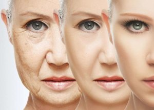 The Key to Fine Ageing Is Here