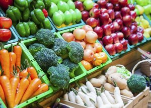 Best Diet Tips for a Healthy Lifestyle