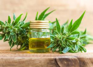 Cannabis Oil Might Be Beneficial In Crohn's Disease, A New Study Reveals