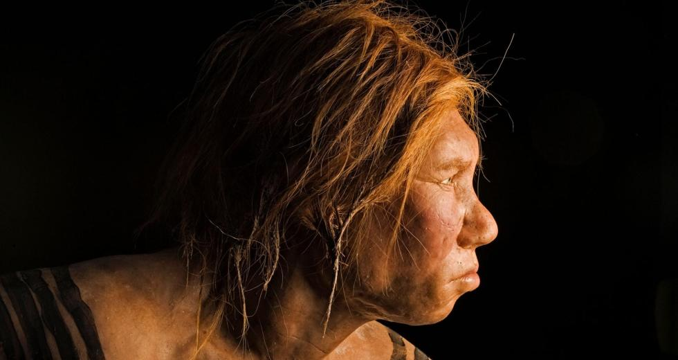 Interbreeding Between Humans and Neanderthals Was Quite Common Back in The Day