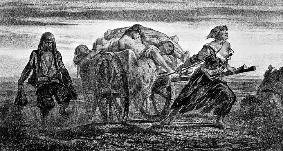 Ancient Strain Of Plague May Have Caused The Decline Of Neolithic Europeans
