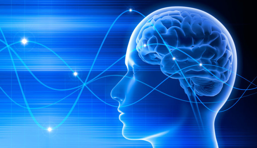 Slow Brainwaves Might Be A Sign Of Dementia, University of Toronto Scientists Think