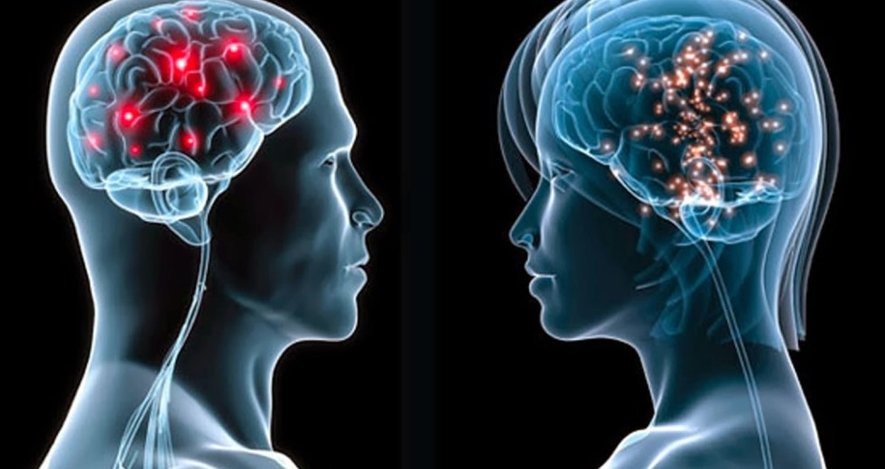 Women's Brains Develop Age-Related Changes Much Slower Than Male Brains