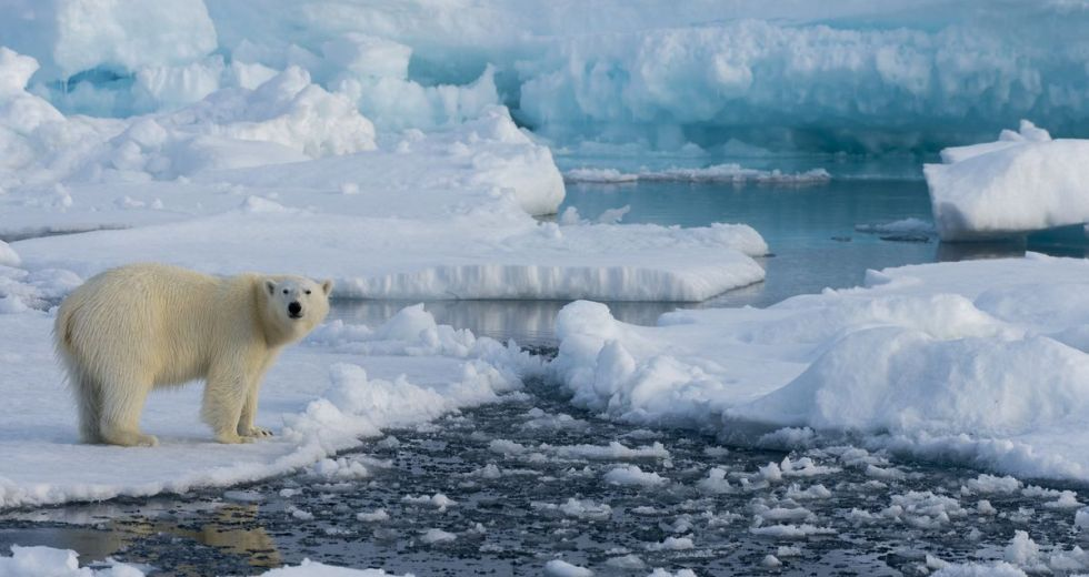 Air Temperatures Are Guilty Of Most Changes In The Arctic System